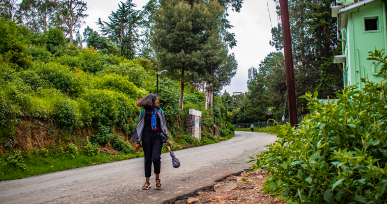 2 Days in the Nilgiris – Ooty Travel Guide