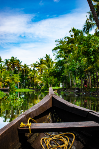 View of backwaters from Canoe